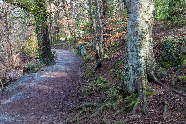 Friars Crag walk