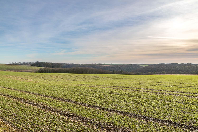 Fridaythorpe walk, Yorkshire Wolds walk
