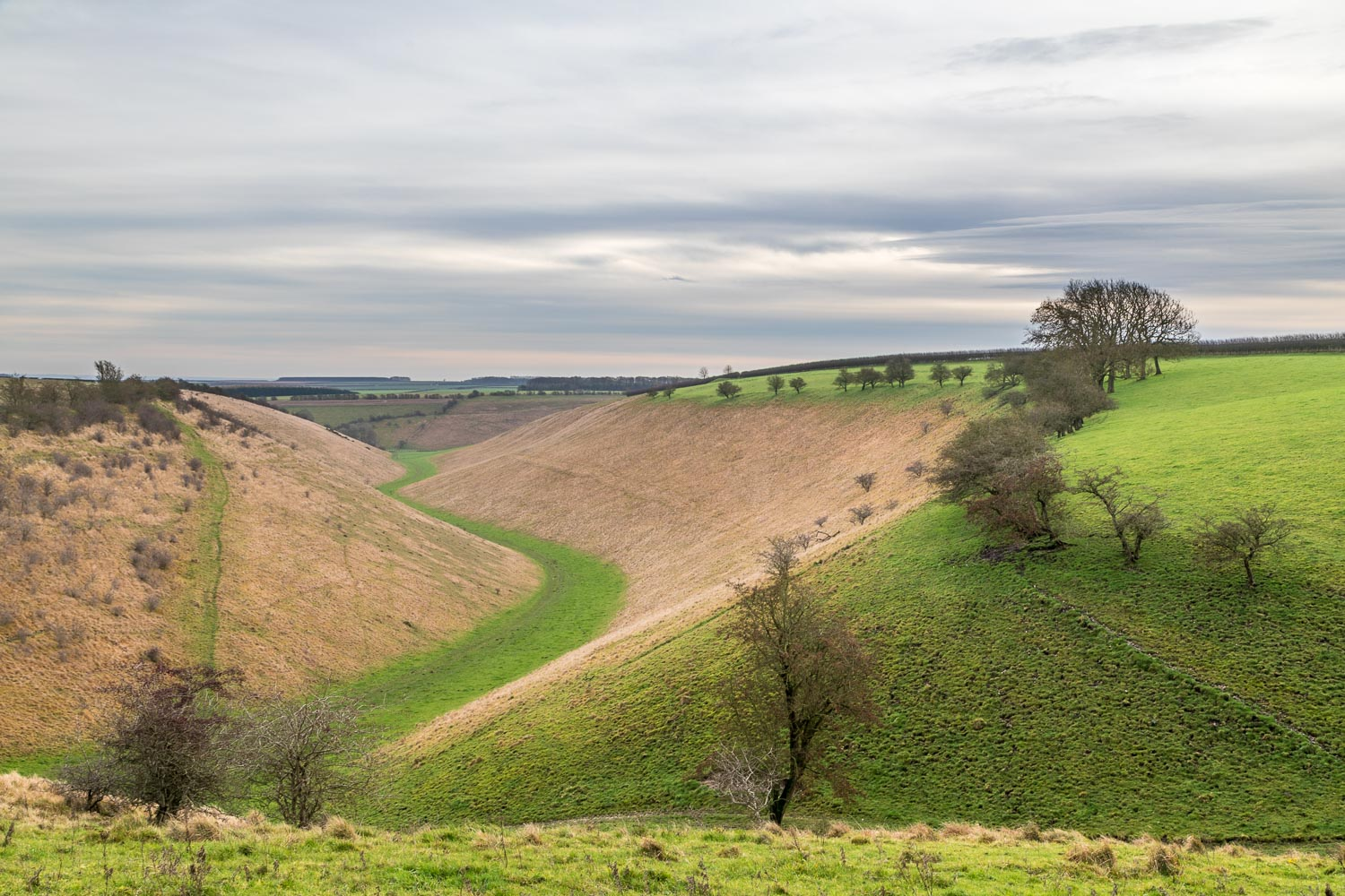 Holm Dale, Yorkshire Wolds