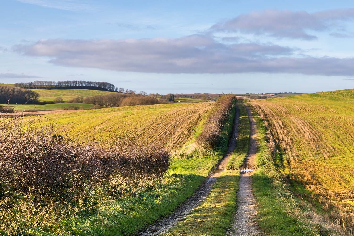 Belchford walk, Platts Lane, Roman salt road