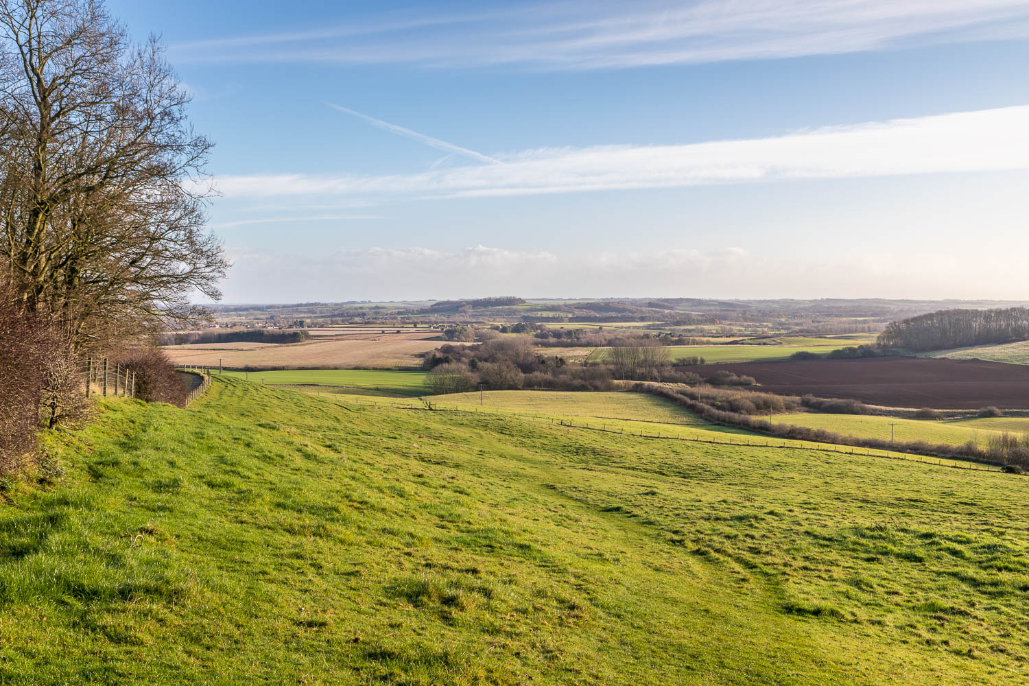 Fulletby walk, Salmonby Carr