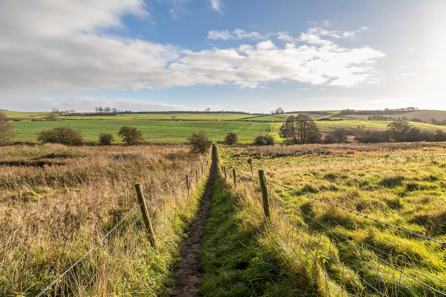 Fulletby walk, Viking Way