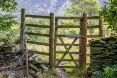 Deer gate Brackenthwaite Hows
