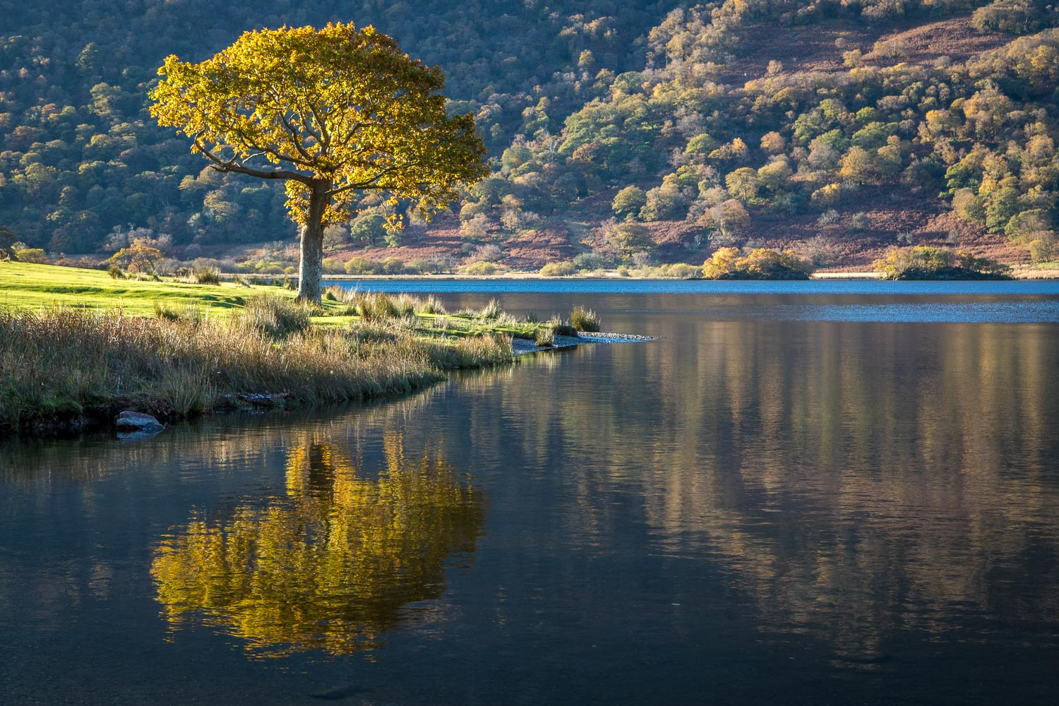 Reflections in Crummock Water