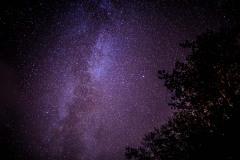 Dark skies lake district, Lorton Vale stars