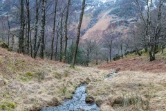 Grange Fell walk, Borrowdale walk