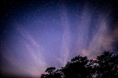 Lake District stars