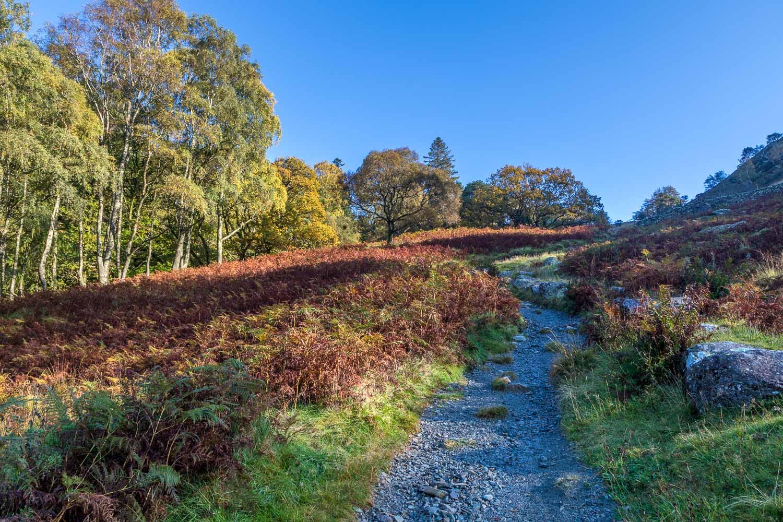 Grange Fell walk