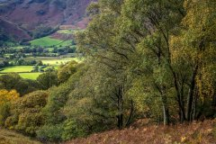 Borrowdale, autumn