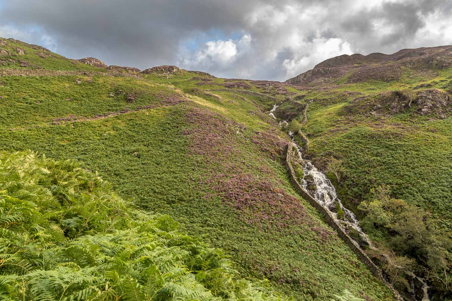 Great Crag walk, Willygrass Gill