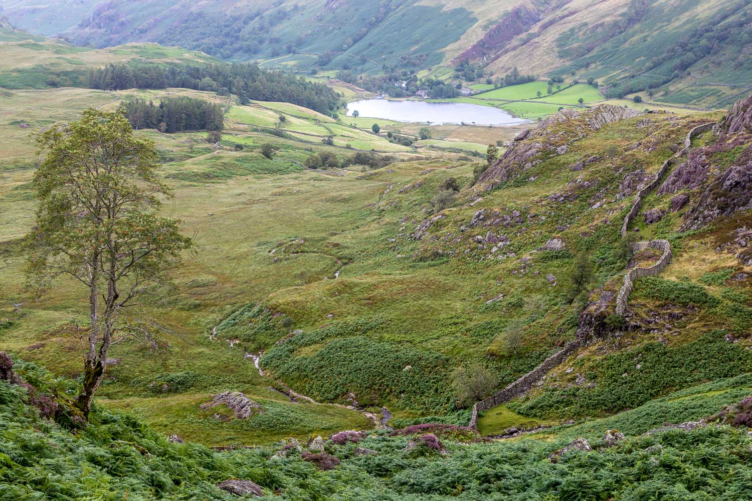 Great Crag walk, Watendlath