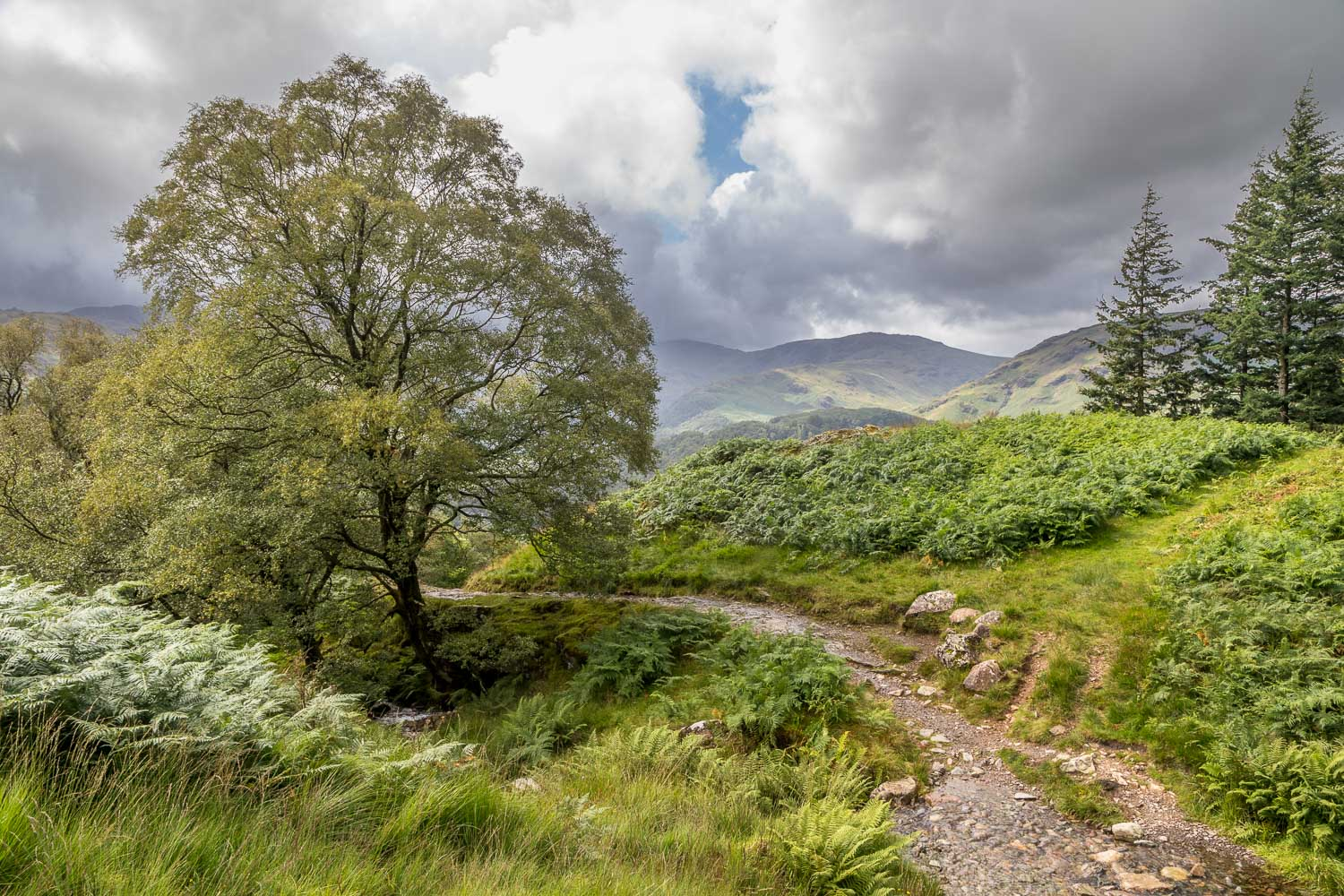 Great Crag walk,Borrowdale