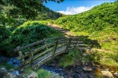 Grindsbrook walk