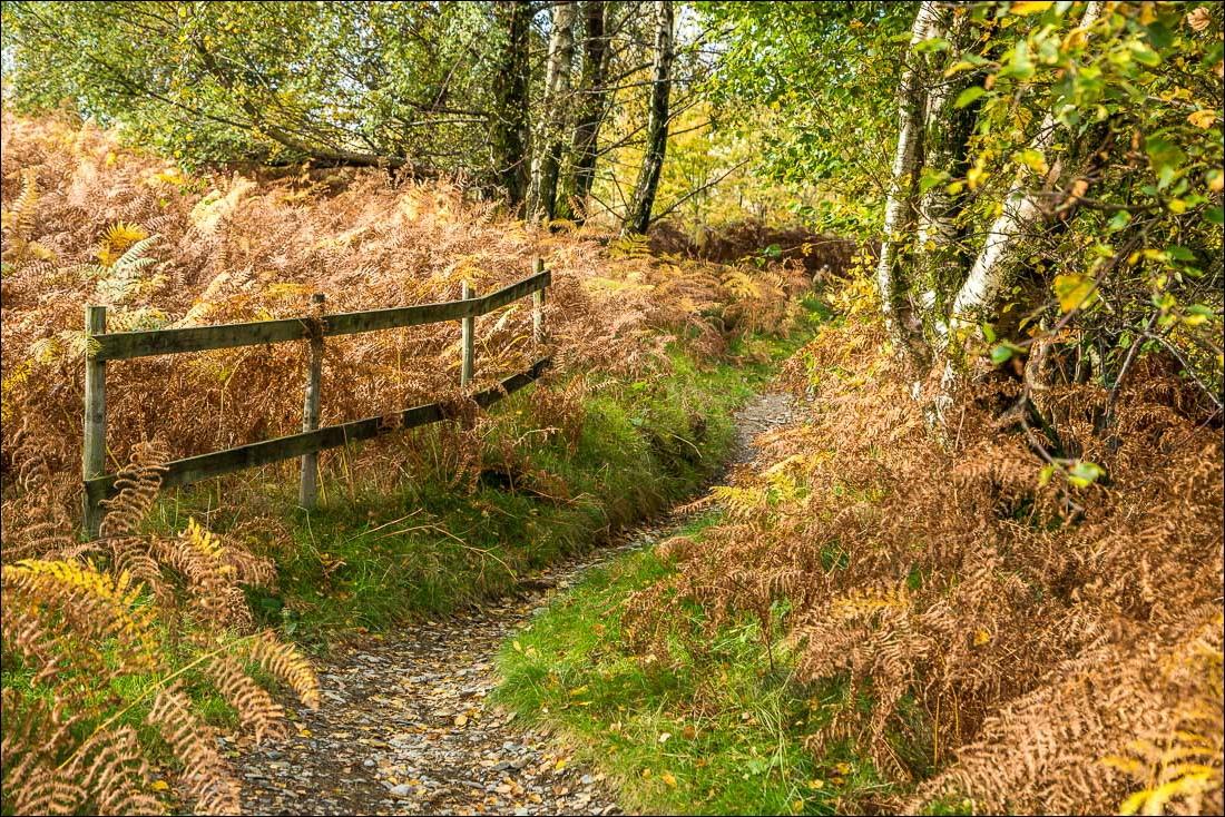 Grisedale Pike walk