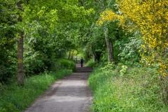 Grosmont Rail Trail