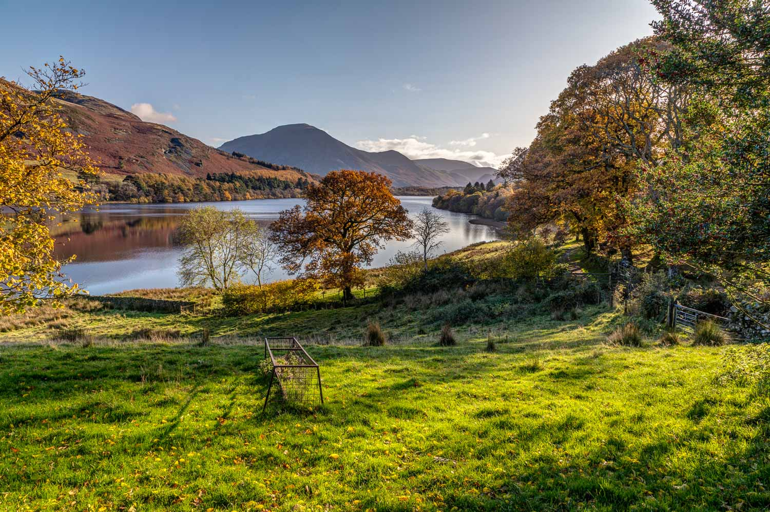 Loweswater and Holme Wood