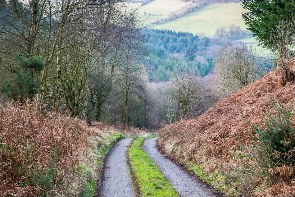 Hackness walk, Troutsdale