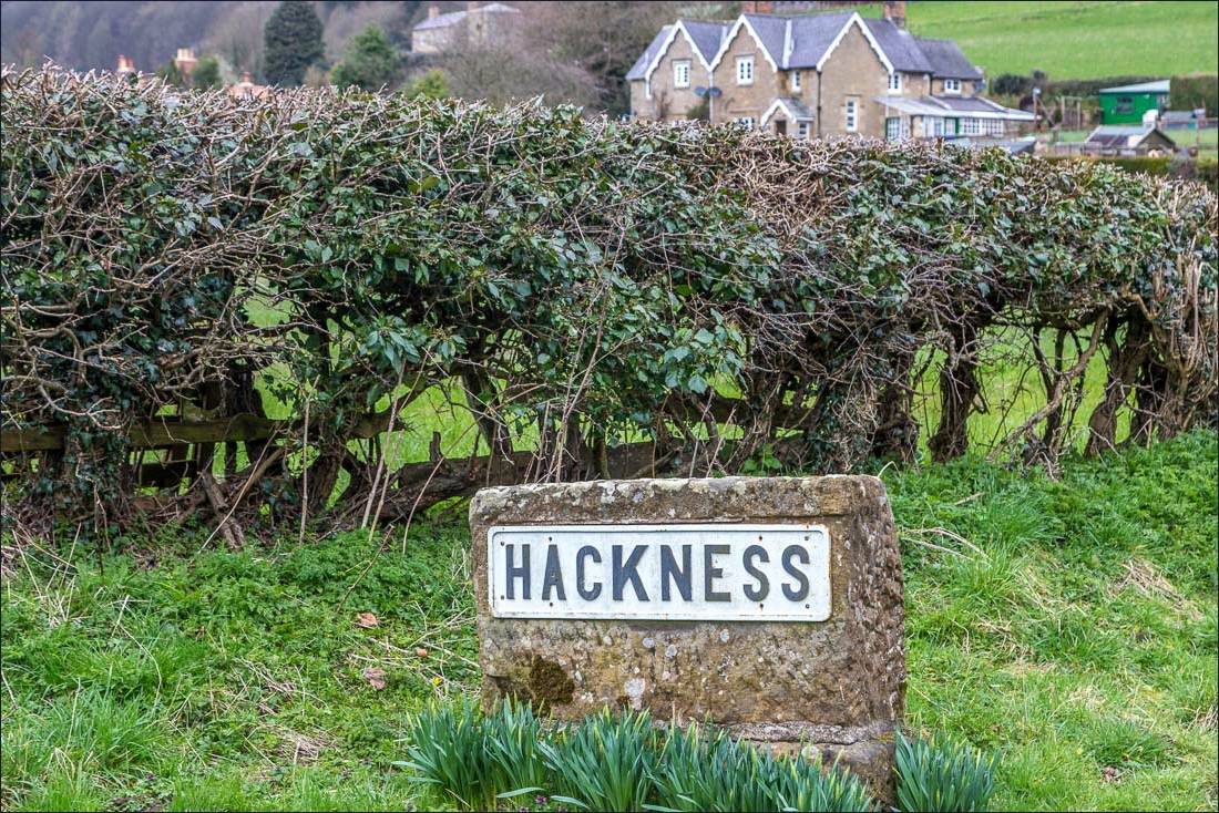 Hackness walk