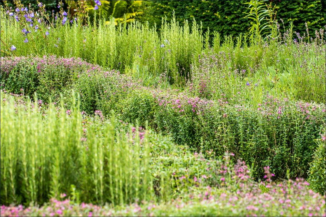Haddon Hall knot garden