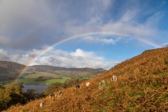 Ullswater rainbow