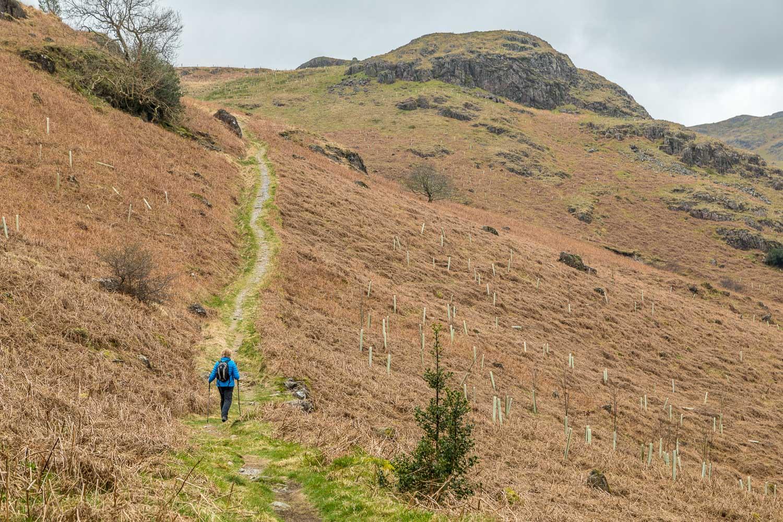 Harter Fell walk, Kepple Crag