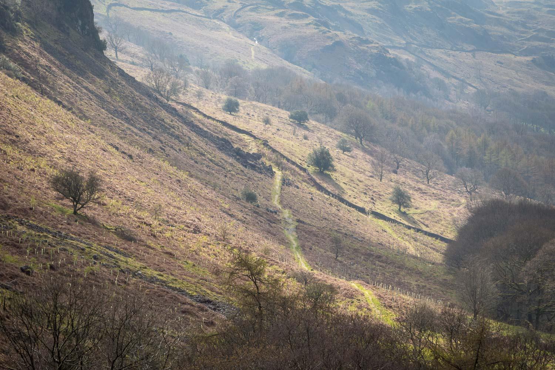 Harter Fell walk