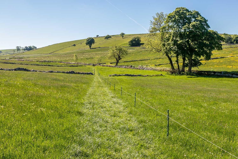 Hartington walk