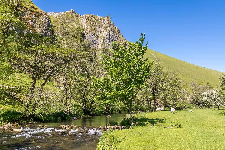 Wolfscote Dale, River Dove