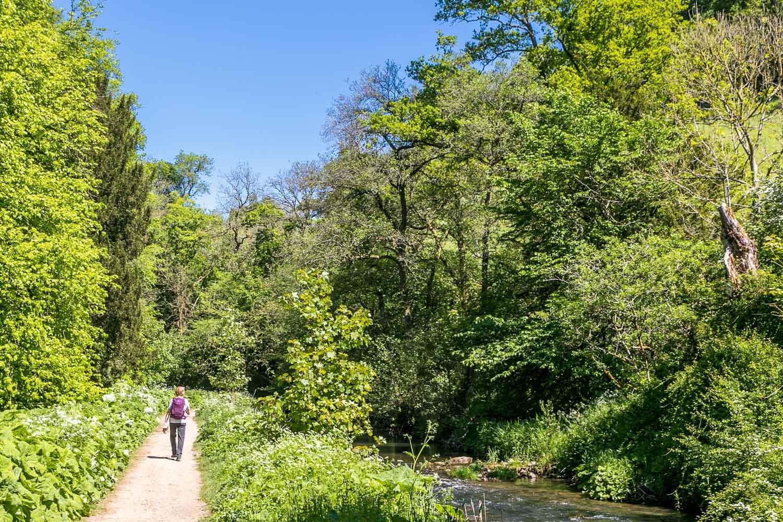 River Dove, Beresford Dale