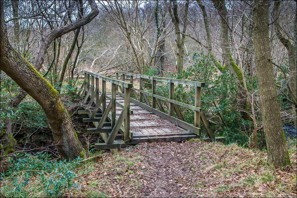Harwood Dale walk, Lownorth Beck