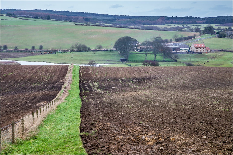 Harwood Dale walk, Hardwick Farm