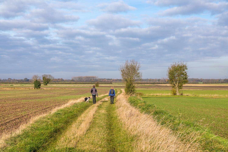 Haxey walk
