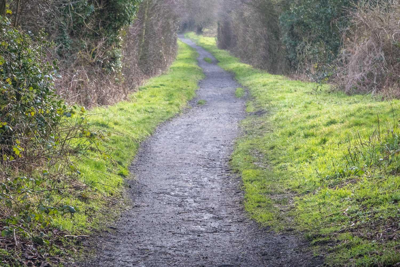 Hayburn Wyke, Cinder Track