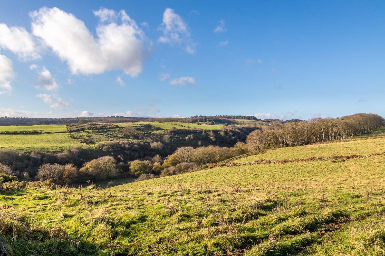 Hayburn Wyke walk, Newlands Dale
