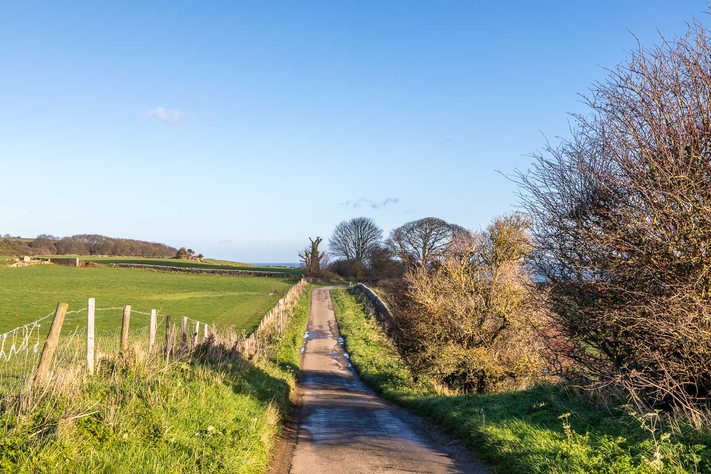 Newlands Lane, Cloughton walk