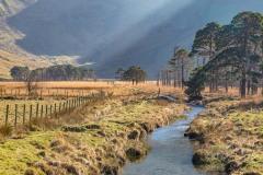 Haystacks walk, Warnscale Bottom