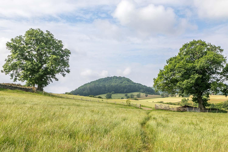 Dunmallard Hill