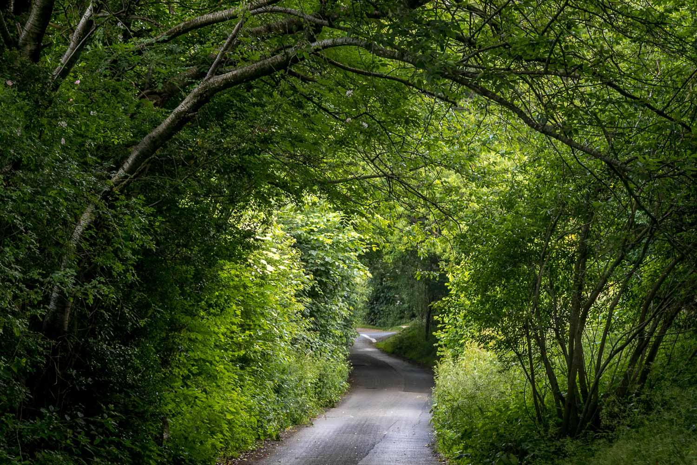 Pooley Bridge walk