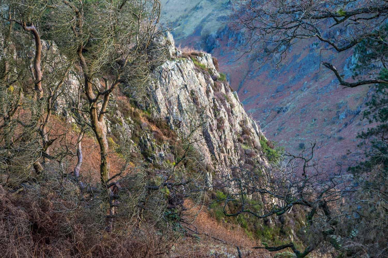 Wren Crag