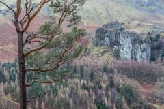 High Rigg walk, Castle Rock