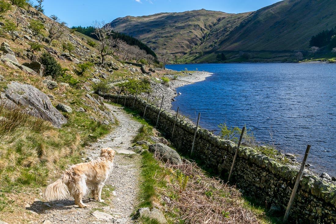 High Street-walk Lake District, The Rigg