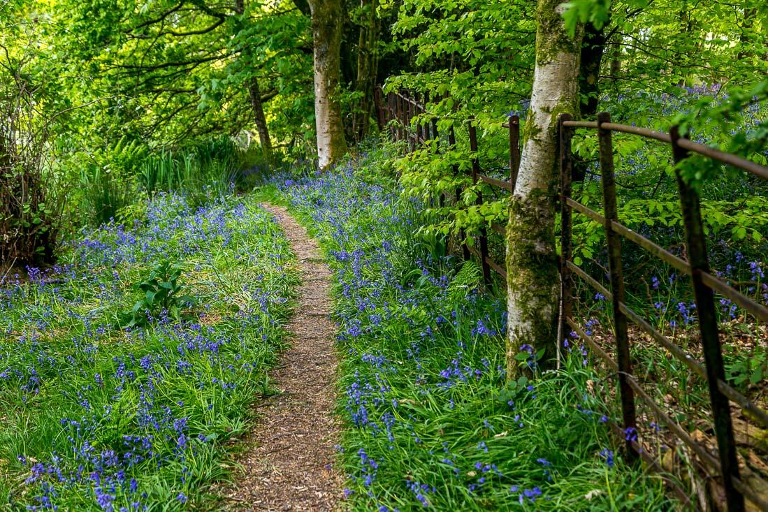 Holehird Gardens walk