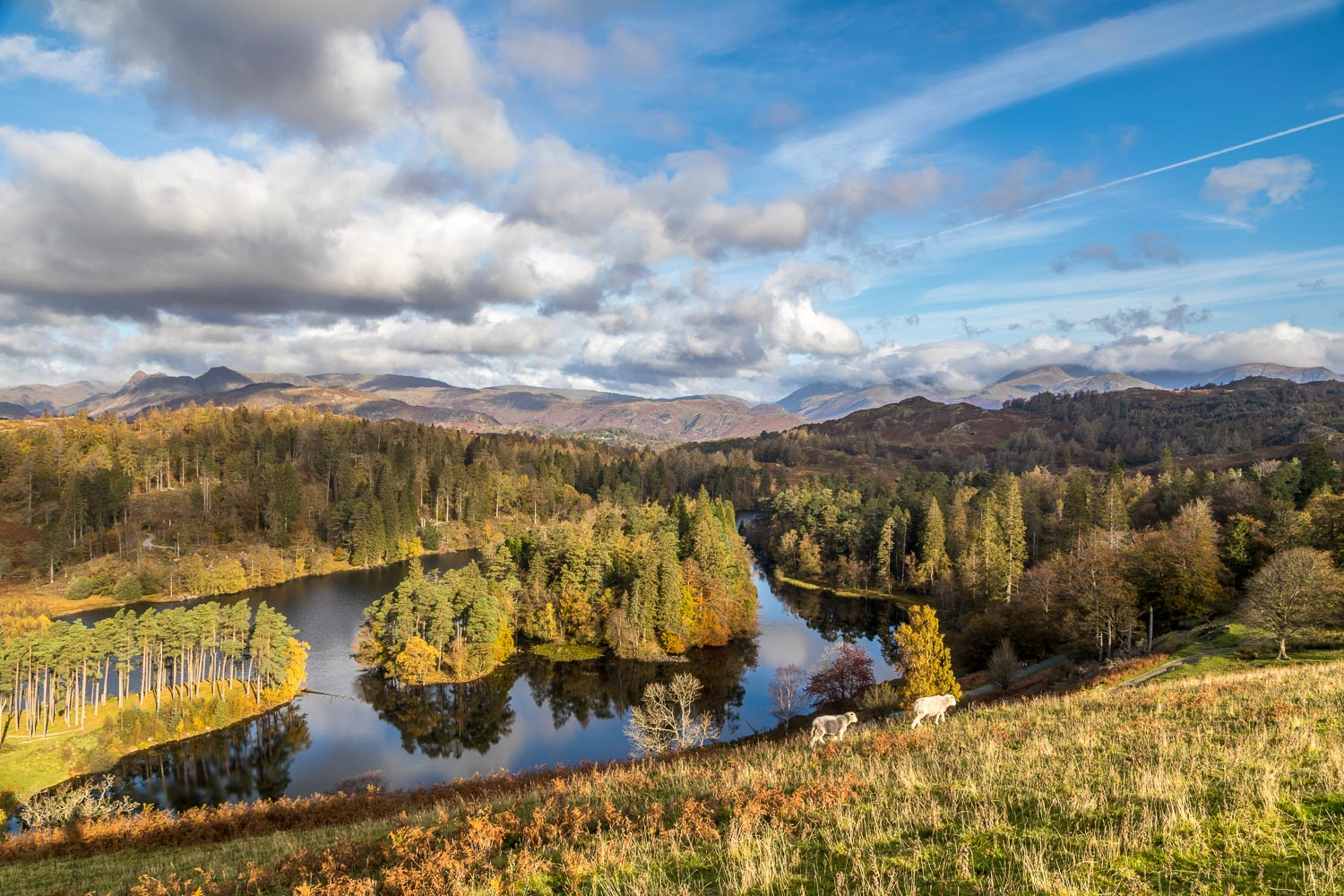 Tarn Hows view, Rose Castle