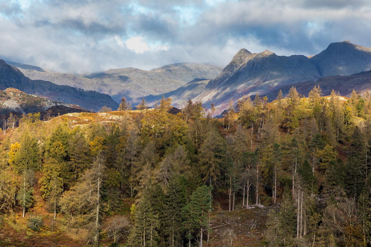 Tarn Hows view, Langdale Pikes