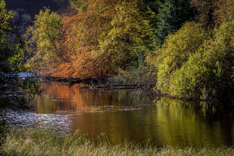 Tarn Hows, autumn reflections