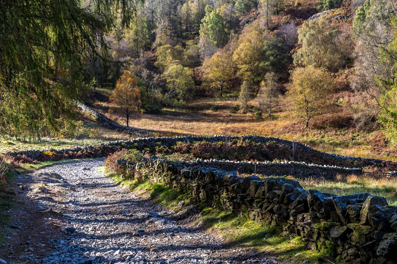 Tarn Hows and Holme Fell walk