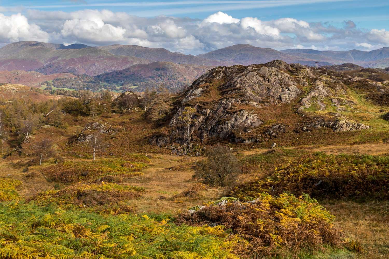 Holme Fell, Ivy Crag
