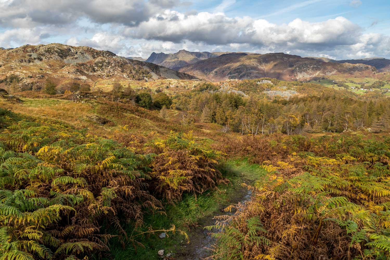 Holme Fell, Langdale Pikes