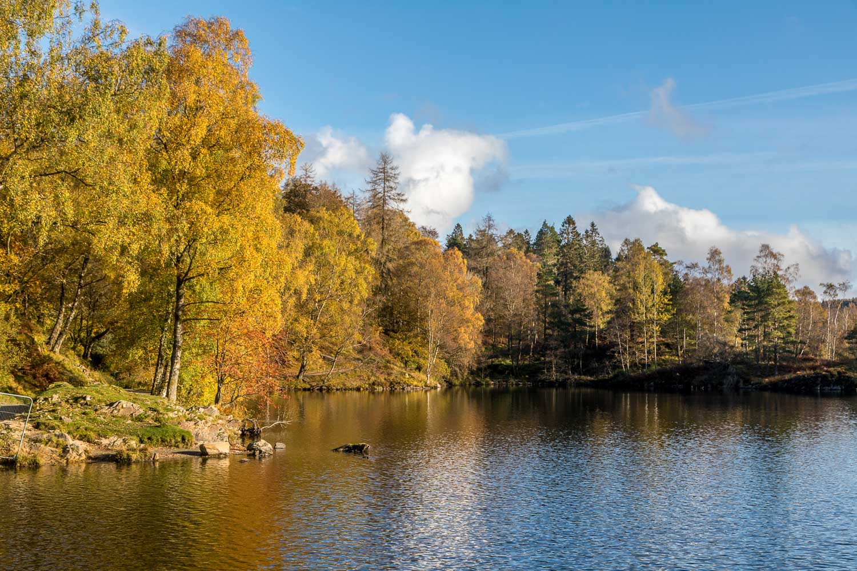 Tarn Hows autumn