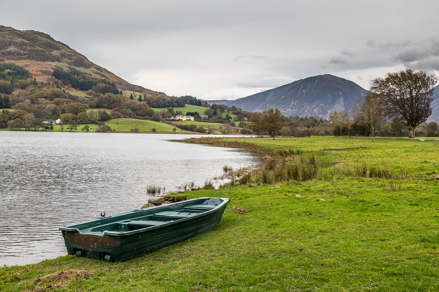 Holme Wood walk, Loweswater walk